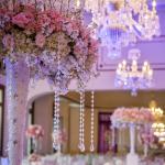Master Wedding & Event Planner